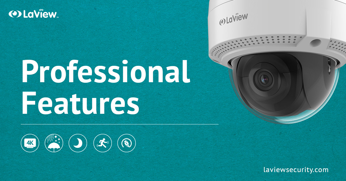 A Guide to Professional Features for Business Security Camera Systems